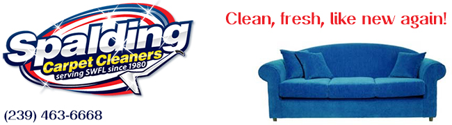 Spalding Upholstery Cleaning Fort Myers